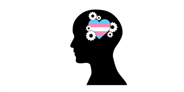 Supporting mental health of those experiencing non-conforming gender identities image is Trans Atlantic logo