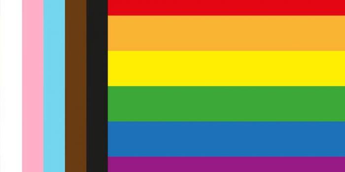 LGBTQIA inclusive flag for avoiding performative allyship