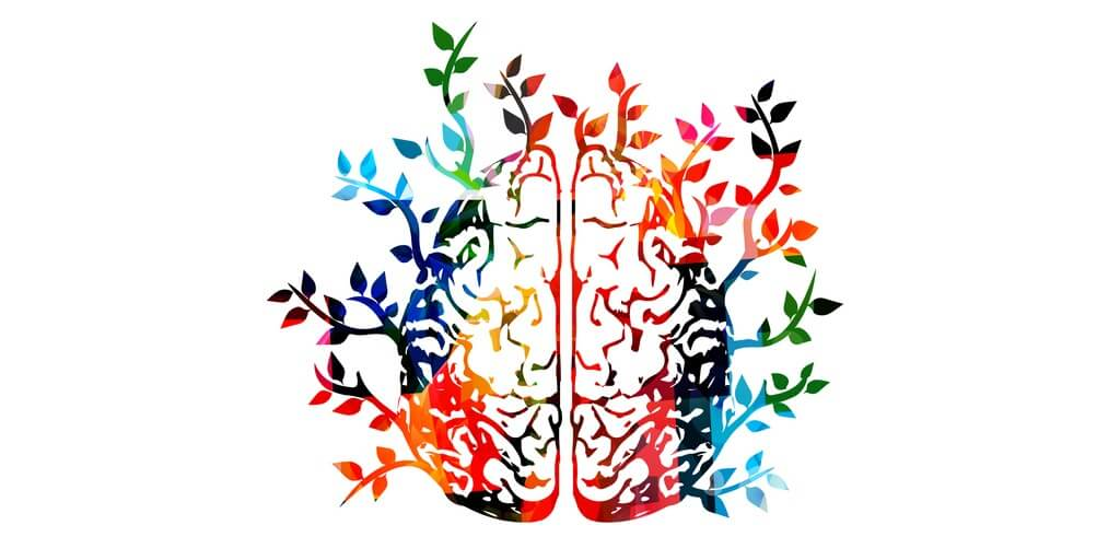 colourful image of brain with nature growing from it supporting indigence clients